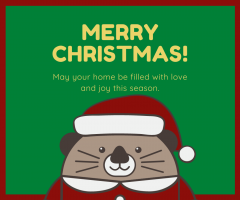 Yellow Christmas Otter Facebook Post
